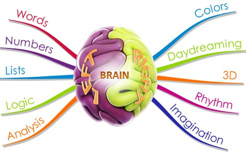 brain and mind map