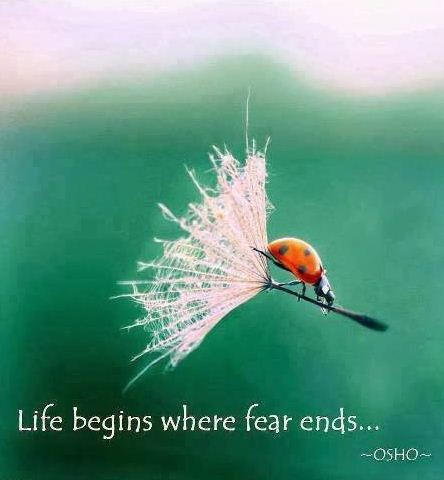 fear and life