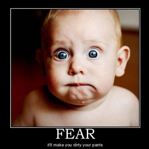 funny fear photo
