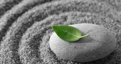 mindfullness photo